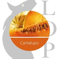 Capo Aroma Concentrato 10ml